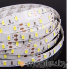 Crixled CRS SMD3528-600-W-WR-12В 120 LED/m IP65 NN 5m White