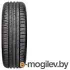 GoodYear EfficientGrip Performance 205/65 R15 94V TL