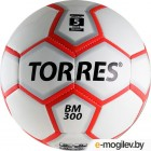 Torres BM300 / B00016