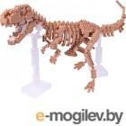 Конструктор из блоков YZ-Diamond Dinosaur Skeleton (66506)