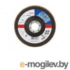 Круг лепестковый 125х22.2 мм K60 плоский STANDARD FOR METAL BOSCH (2608603717)