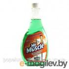 Средство для мытья стекол Mr. Muscle  500 мл (эконом)