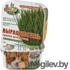 Здоровья КЛАД для зеленой травки для кошек
