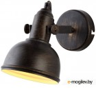 Светильник Arte Lamp Martin A5213AP-1BR
