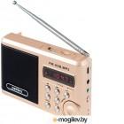 Радиоприемники Perfeo PF-SV922AU Gold