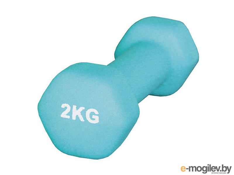 Гантель Atemi AD-01-2 2kg