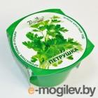 BontiLand Зелень круглый год Петрушка 411807