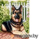 Картина по номерам Picasso Немецкая овчарка (PC3040037)