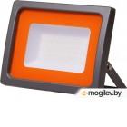 Прожектор светодиодный 100 Вт PFL-SC 6500К, IP65, 160-260В, JAZZWAY (1710Лм, холодный белый свет)