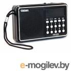 Сигнал РП-221, бат. 3*АА (не в компл.), 220V, акб 400мА/ч, USB, SD, дисплей