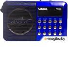 Сигнал РП-222, бат. 3*АА (не в компл.), 220V, акб 400мА/ч, USB, SD, дисплей