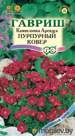 Камнеломка Арендса Пурпурный ковер* 0,01 г