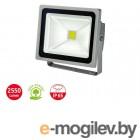 Прожектор светодиодный 30 Вт IP65 Brennenstuhl L CN 130 V2 (2550Лм, холодный белый свет)