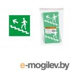 Знак Направление к эвакуационному выходу (по лестнице налево вверх) 150х150мм TDM