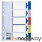 Индексные разделители Esselte А5 пластик 5 разделов цветные