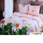 Комплект постельного белья АртПостель Ромашки 500