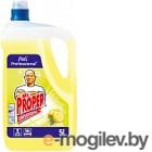 Универсальное чистящее средство Mr.Proper Professional Лимон для твердых поверхностей (5л)