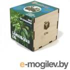 Умные растения ЭкоДом Ель Байкальская 1061843804520