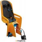 Детское велокресло Thule RideAlong 100108 (оранжевый)