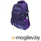 Gaoba Limited Edition Purple 6511