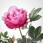 СМИККА, Цветок искусственный, Пион, темно-розовый