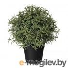 Искусственное растение в горшке ФЕЙКА 703.821.14