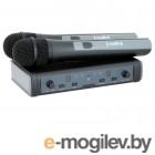 Радиосистемы ProAudio DWS-807HT