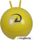 Мячи Мячи Мяч Z-Sports BB-004-45 Yellow
