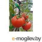 Клипсы для крепления растений, 20шт. ВОЛАТ