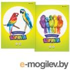 Бумага цветная Silwerhof 917155-44/1 одност. 8цв./16л. A4 Попугаи 50г/м2 обл.бум.офсет скрепка