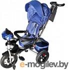 Детский велосипед Sundays SN-4in1-TR-01 (голубой)