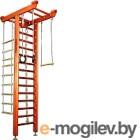 Детский спортивный комплекс Kampfer Big Sport Ceiling (классический, стандарт)