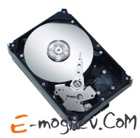 Seagate 160 Gb ST3160815AS