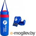 Набор для бокса детский RuscoSport 4oz (синий)
