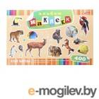 Альбомы, краски, кисти Альбом наклеек Hatber В мире животных O162293