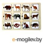головоломки Smile Decor Секретики Зоопарк 3141773