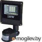 Прожектор ETP 6000K IP65 10W (с датчиком движения)
