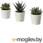 Искусственные растения Ikea Фейка 203.953.45 (3шт)