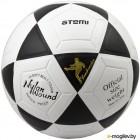 Футбольный мяч Atemi Goal (размер 5, белый/черный)