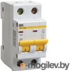 Выключатель автоматический IEK ВА 47-29M 13A 2п 4.5кА С