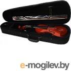 Скрипка Aileen VG-200 4/4 со смычком в футляре (натуральная)