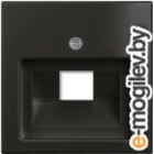 Лицевая панель для розетки ABB Basic 55 1753-0-0207 (шато-черный)