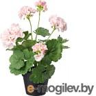 Искусственное растение Ikea Фейка 703.953.24