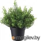 Искусственное растение Ikea Фейка 803.953.33