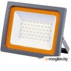 Прожектор JAZZway 5005167
