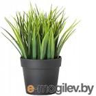 Искусственное растение Ikea Фейка 604.339.44