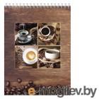 Блокнот Silwerhof 731193-14 A4 мелов.картон 60л клетка гребень Кофе