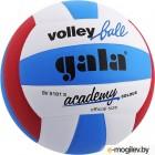 Мяч волейбольный Gala Sport Academy / BV5181S (размер 5, белый/синий/красный)
