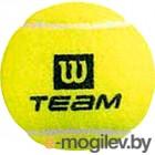 Теннисные мячи Wilson TeamW Practice / WRT111900 (4шт)