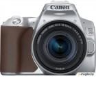 Зеркальный фотоаппарат Canon EOS 250D Kit EF-S 18-55mm IS STM / 3461C001 (серебристый)